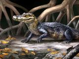 Culebrasuchus