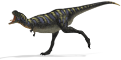 Aucasaurus running 01 by 2ndecho-d51qjx3.png