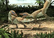 Sciurumimus albersdoerferi web fa15