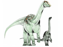 JPI Ampelosaurus
