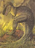 Tyrannosaurus Album of Dinosaurs