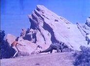 Gastonia 1978 01