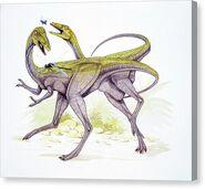 Two-compsognathus-longipes-deagostiniuigscience-photo-library-canvas-print