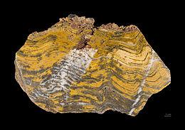 Stromatolithe Paléoarchéen - MNHT.PAL.2009.10.1