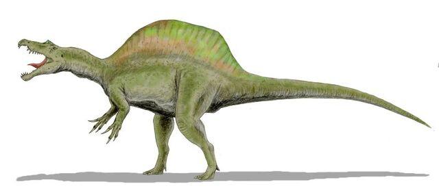 File:Spinosaurus BW.jpg