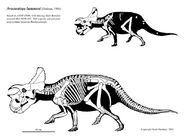 http://dinosaurpictures