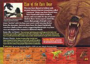 Cave Bear back