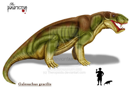 Galesuchus by Theropsida