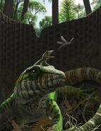 Image 7946 1-Dendromaia-unamakiensis