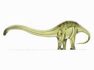 JPI Omeisaurus