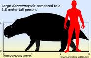 Kannemeyeria-size