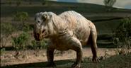 Lystrosaurus (1)