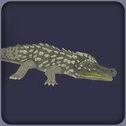 Zt2 Deinosuchus