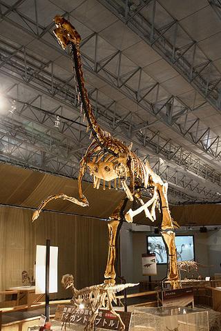 File:Gigantoraptor.png