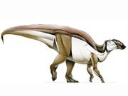 JPI Gryposaurus