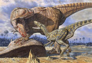 Carcharodontosaurus-guards-its-kill-against-deltadromeus-mark-hallett