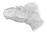 Gorgosaurus Utah 090305