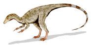 Compsognathus BW2