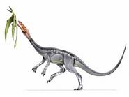 JPI Elaphrosaurus