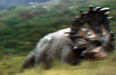 Mystery Ceratopsian Land
