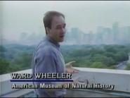 Ward Wheeler in The Real Jurassic Park