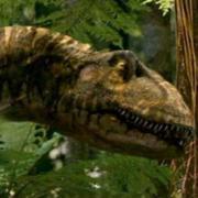 180px-Allosaurus robustus