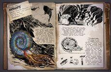 800px-Ammonite Dossier