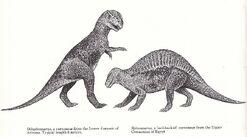 Spinosaurus and Dilophosaurus