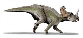 Centrosaurus bw