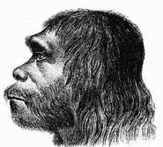 Neanderthaler Fund