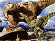 07 Carcharodontosaurus