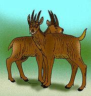 220px-Hoplitomeryx matthei