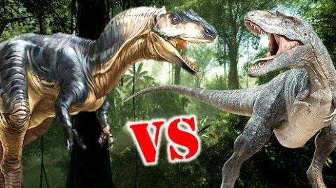 Allosaurus Vs Gorgosaurus Who Would Win?