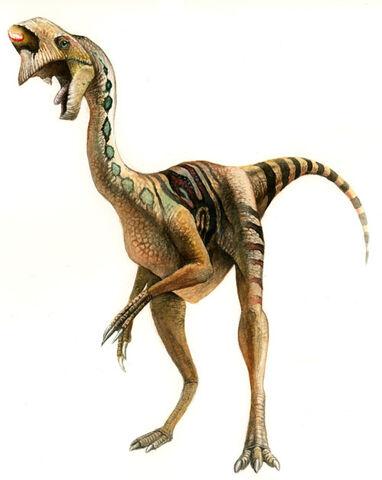 File:Oviraptor02.jpg