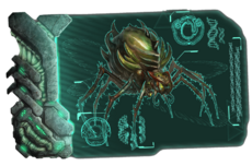 Dossier Broodmother