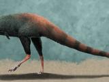 Huinculsaurus
