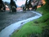 K-Pg Extinction
