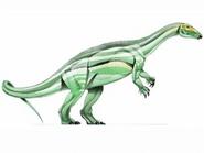 JPI Thescelosaurus