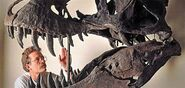 Phenom-T-rex-bite-631