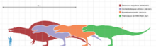 Largesttheropods