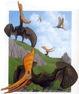 Pteranodon Steinbergi