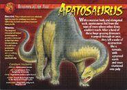 Apatosaurus front