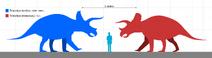 Triceratops horridus and prorsus size comparison