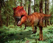 Tyrannosaurus Rex1