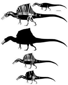 Cenomanian north african spinosaurs by getawaytrike d9wr5jt-fullview