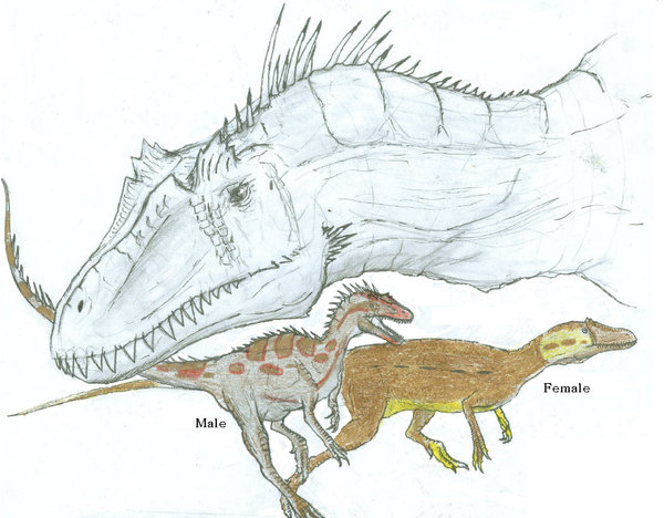 File:Deltadromeus Sketches by Ashere.jpg