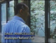 Dale Marcellini in The Real Jurassic Park