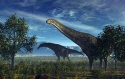 Pakisaurus NT.jpg