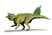 Psittacosaurus sibiricus whole BW