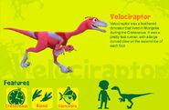 Velociraptor en US